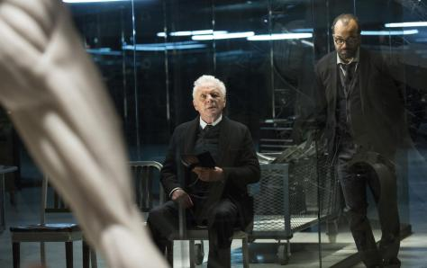 westworld_almas_de_metal_serie_de_tv-179792310-large