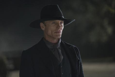 westworld_almas_de_metal_serie_de_tv-421100062-large