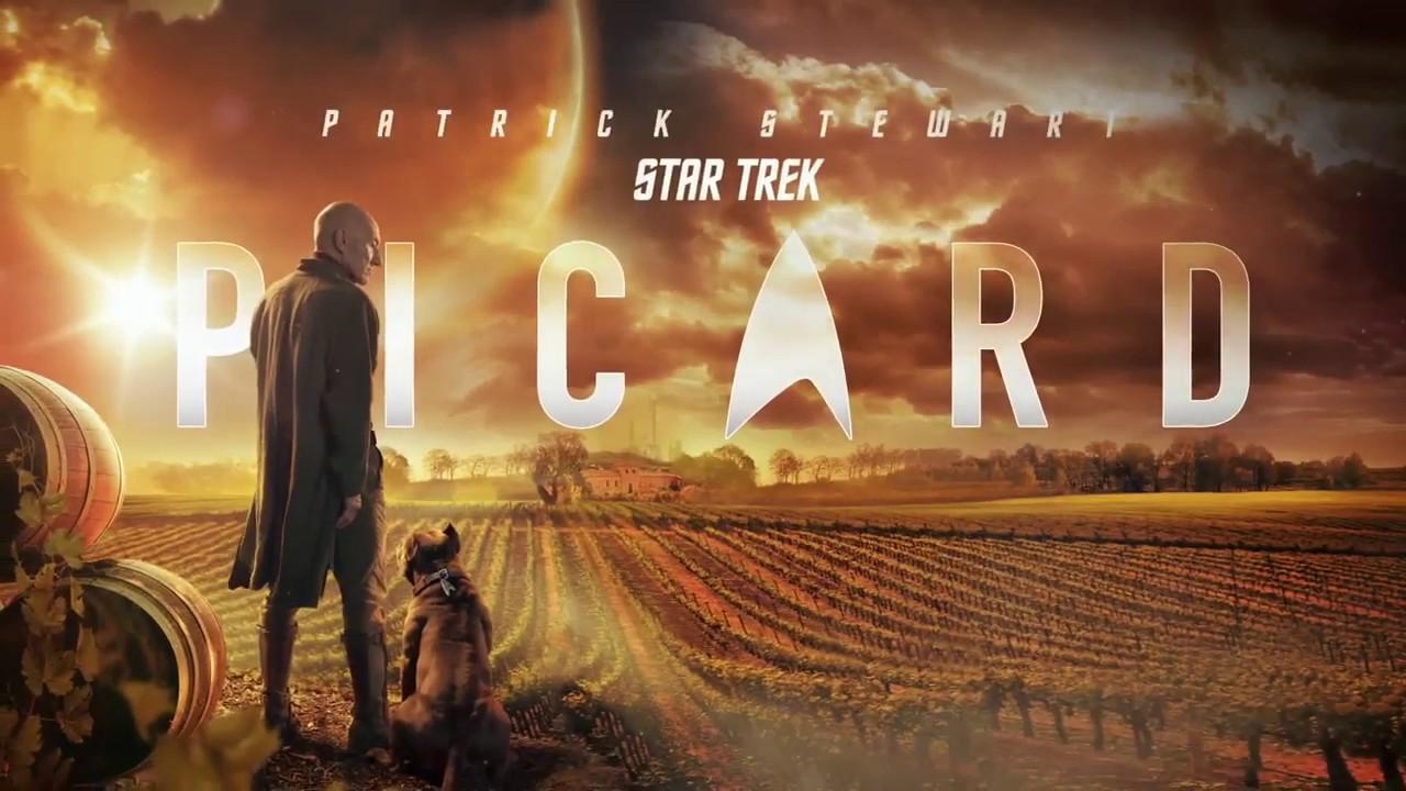 Descargar Star Trek Picard Subtiluda, Latino - Drive - 1080P